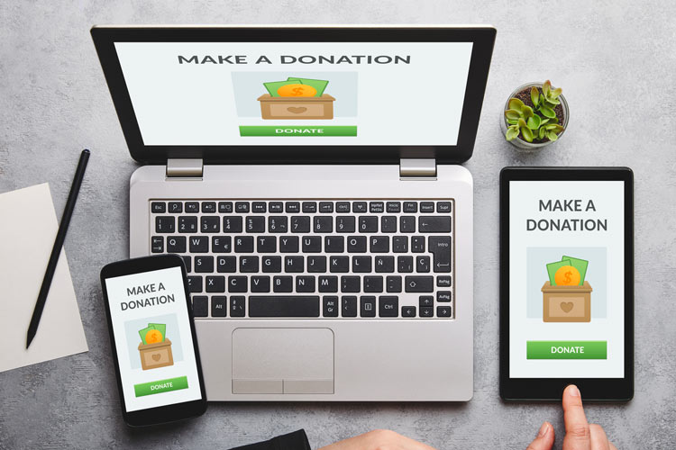 website development and design for NGO website